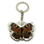 Ed Speldy East Company BTK108 Real Bug Peacock Pancy Butterfly Key Chain
