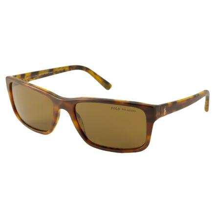 Polo Ralph Lauren Sunglasses PH4076 / Frame: Tortoise Lens ...