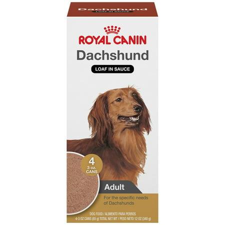 Royal Canin Breed Health Nutrition Dachshund Small Breed Wet Dog Food
