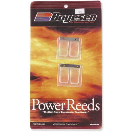 Boyesen 6104 Power Reeds ()