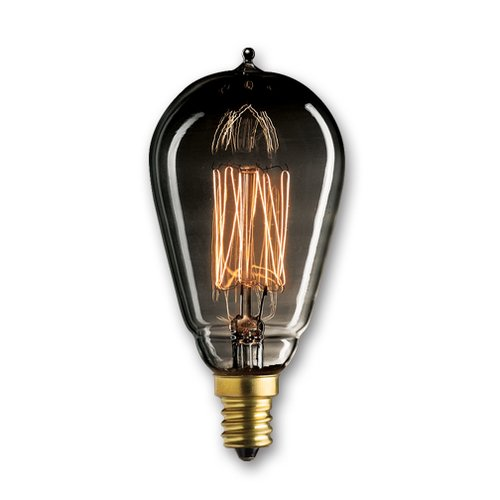 Bulbrite Industries 25W Smoke Incandescent Light Bulb (Set of 5)
