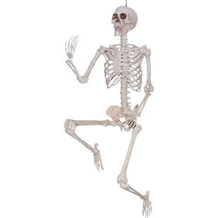 5 ft. Pose Skeleton Halloween Decoration