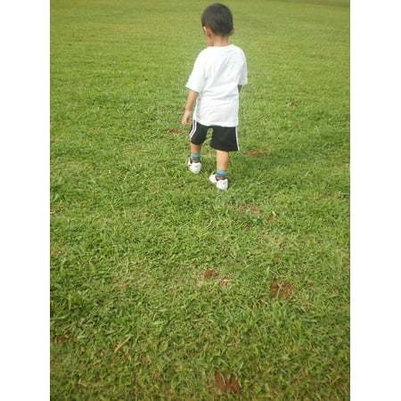 - LAMINATED POSTER Boy Grass Garden Lawn Walking Child Poster Print 24 x 36
