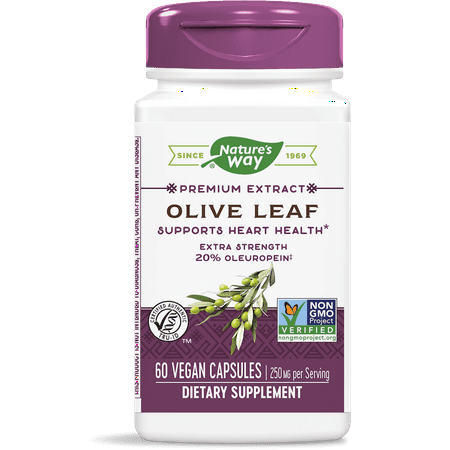 Natures Way Standardized Olive Leaf Premium Extract 20% Oleuropein 60 (Best Way To Take Olive Leaf Extract)