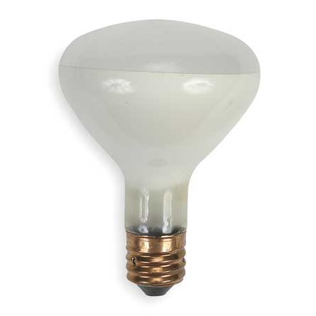 - GE LIGHTING 500R/3FL Incandescent Floodlight,R40,500W