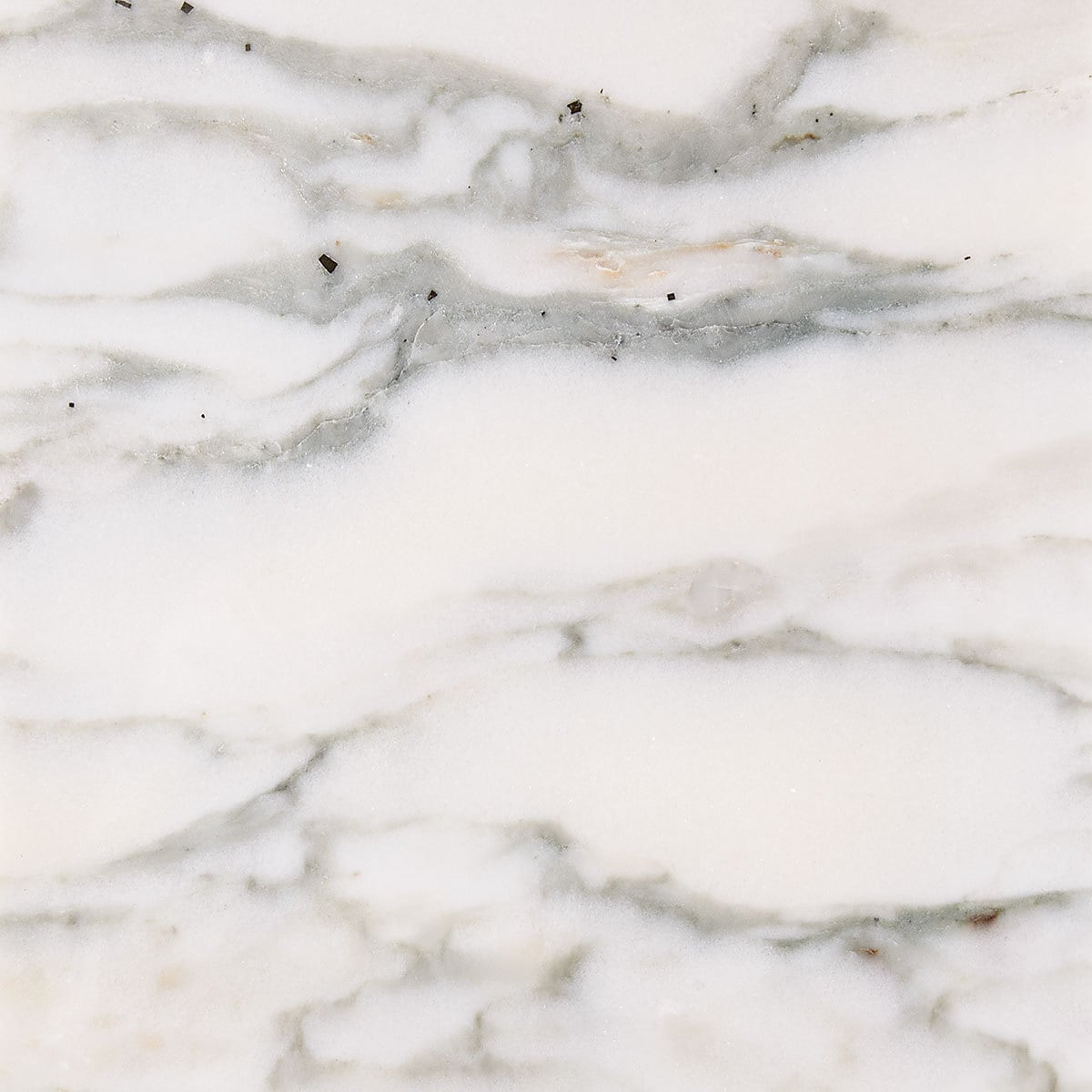 Marbletiledirect Calacatta Verde White Marble 3-inch x 6-inch x 3/8-inch Polished Tiles
