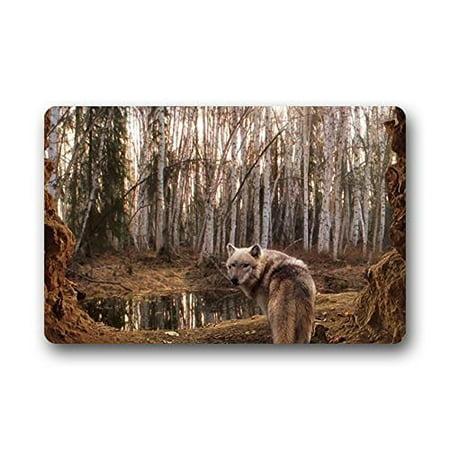 - WinHome Art Wolfs Doormat Floor Mats Rugs Outdoors/Indoor Doormat Size 23.6x15.7 inches