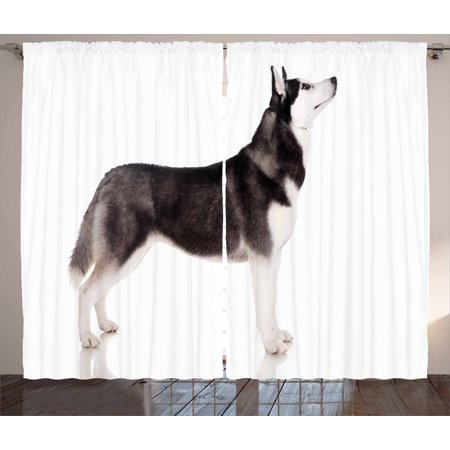 Alaskan Malamute Curtains 2 Panels Set  Alaskan Animal Arctic Canine Mammal Obedient Companion Portrait Purebred  Window Drapes For Living Room Bedroom  108W X 96L Inches  Black White  By Ambesonne