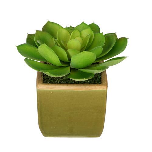 House of Silk Flowers Inc. Artificial Echevaria Succulent Desk Top Plant in Pot