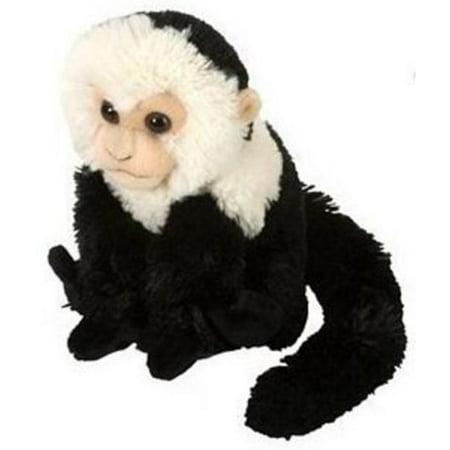 Capuchin Monkey Mini Cuddlekin by Wild Republic - 12274