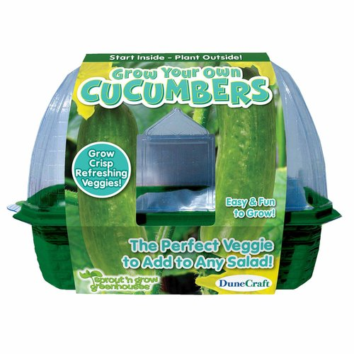 Sprout 'n Grow Greenhouse, Grow Your Own Cucumbers