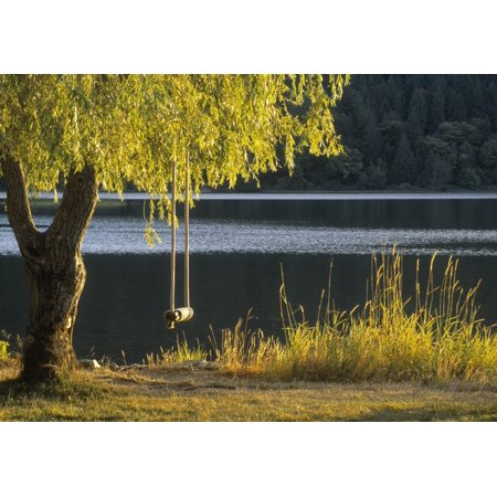 Fv3584 Natural Moments Photography Swing Hanging From Tree Canvas Art - Darwin Wiggett  Design Pics (17 x 12)