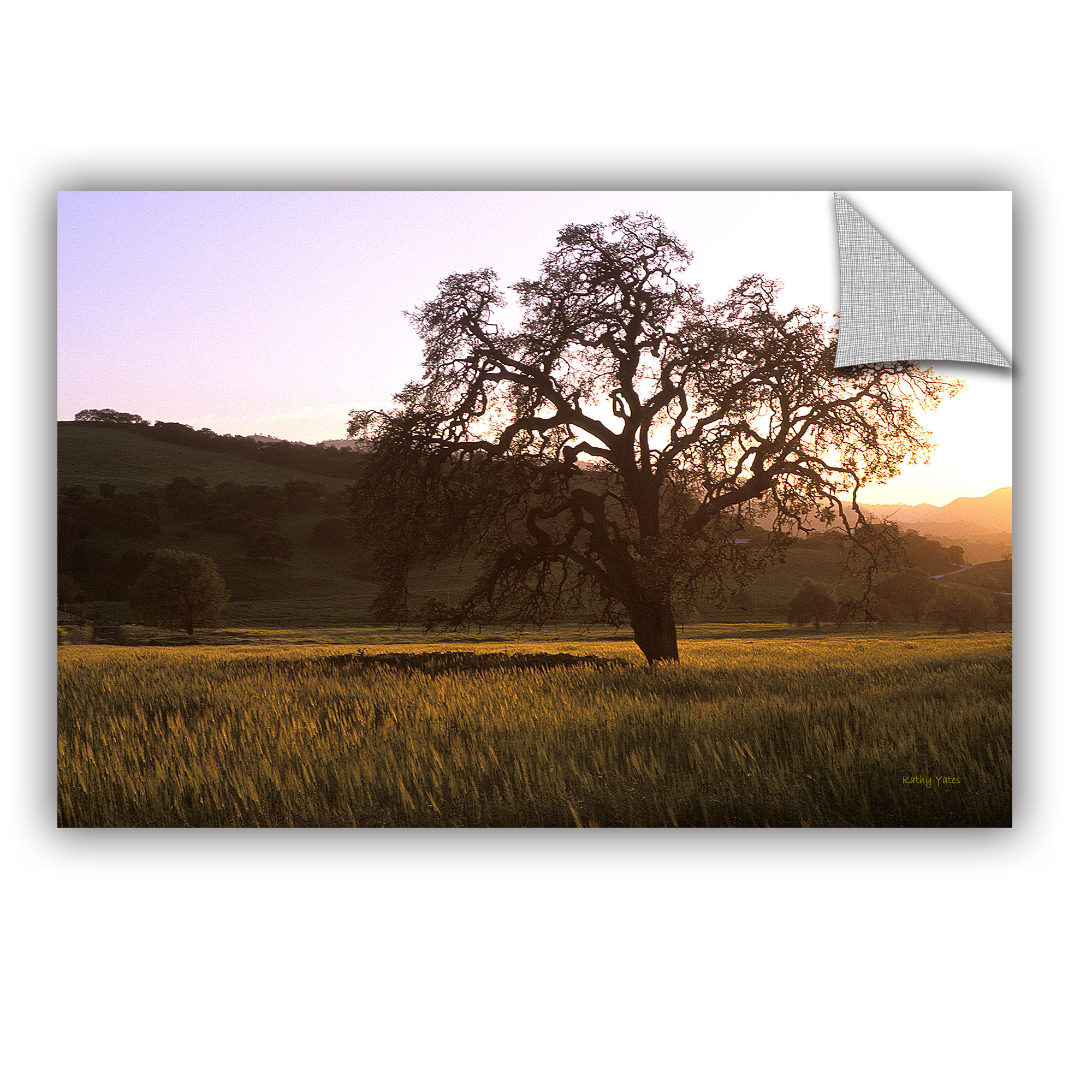 'Golden Hour' Removable Wall Art Mural