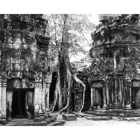 Cambodia Ta Prohm Na Partial View Of The Ruins Of The Bayon Temple Ta Prohm At Angkor Cambodia 1960 Poster Print by Granger Collection Ta Prohm Temple