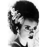 Elsa Lanchester in Bride of Frankenstein striking profile portrait 24x36 Poster