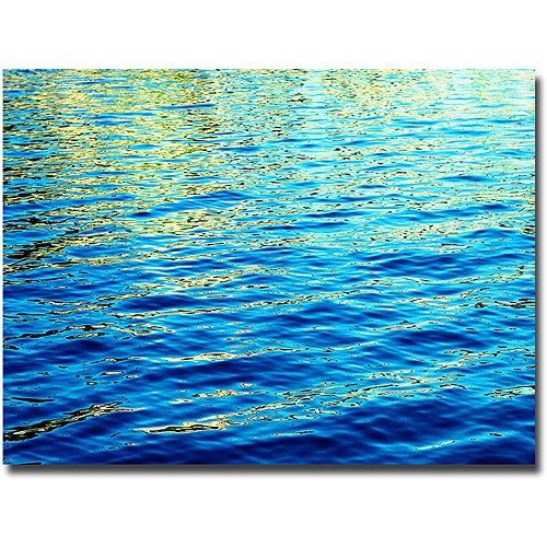 "Trademark Fine Art ""Ripples"" Canvas Wall Art by Ariane Moshayedi"