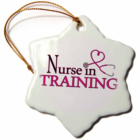 3dRose Nurse in Training Pink Heart Stethoscope, Snowflake Ornament, Porcelain, 3-inch](Nurse Ornaments)