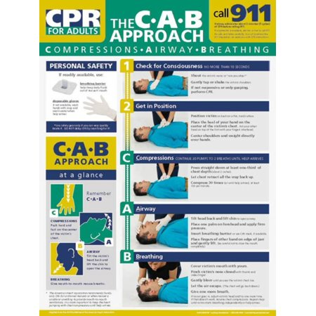 Learning Zone Poster - Adult CPR Poster Laminated Poster - 18x24