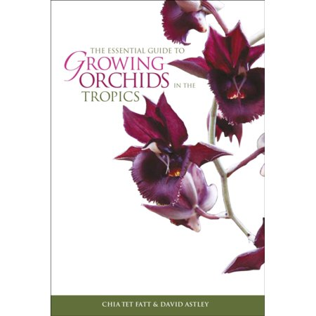 Essential Guide To Growing Orchids In The Tropics  Paperback