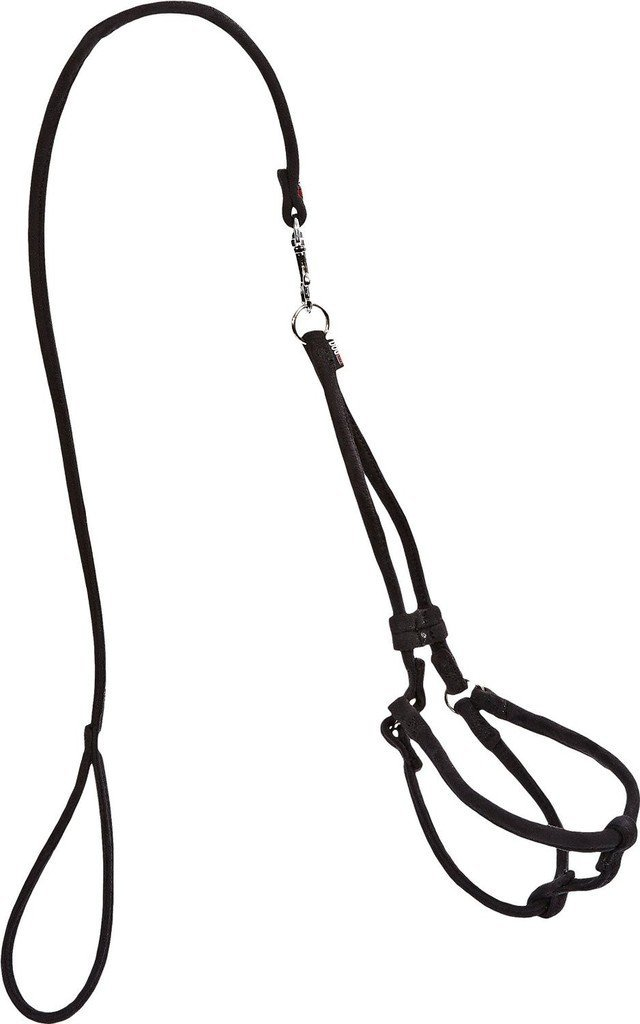 Soft And Padded Comfort Microfiber Round Step In Harness And Leash