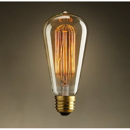 Newhouse Lighting 60W ST64 Vintage Incandescent Edison Light - White Incandescent Eiko Light Bulb