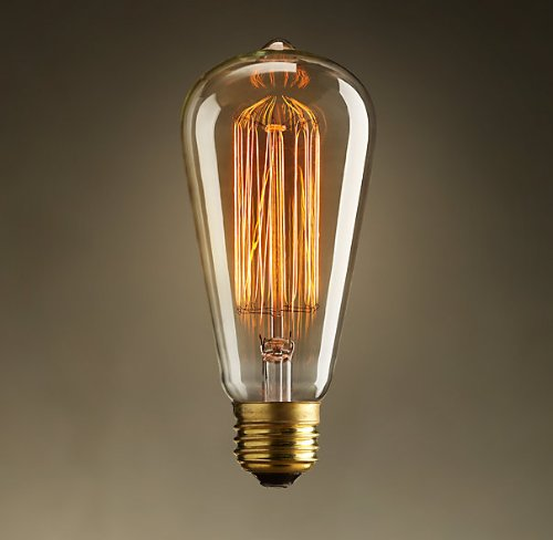 Newhouse Lighting 60W ST64 Vintage Incandescent Edison Light Bulb
