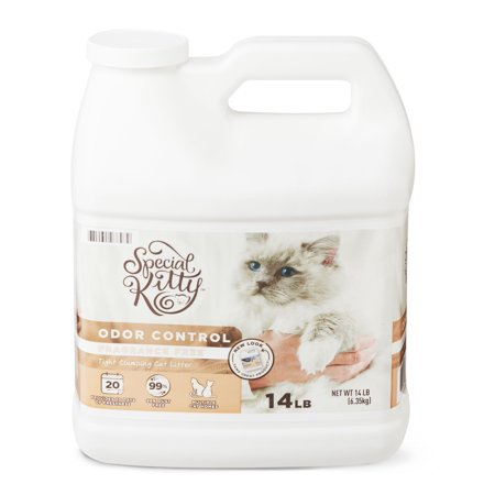 Special Kitty Scoopable Tight Clumping Cat Litter, Fragrance Free, 14 lb