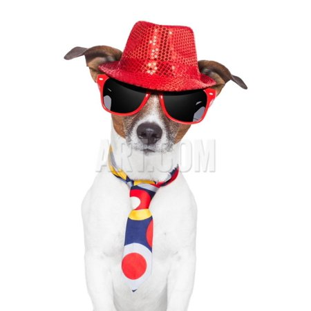 Sully Hat (Crazy Silly Funny Dog Hat Glasses Tie Print Wall Art By Javier)