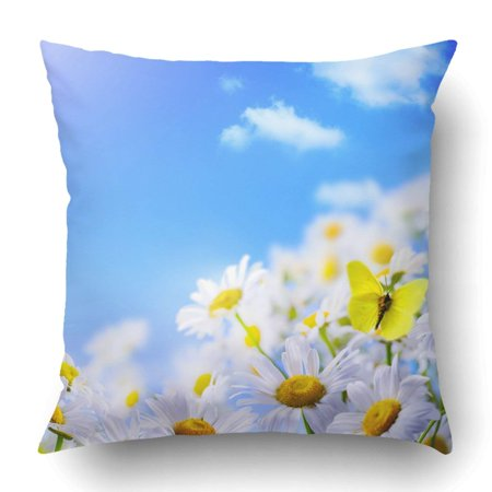 BPBOP Green June Spring With On Of Blue Sky White Butterfly Summer Daisy Flower May Pillowcase Cover Cushion 18x18 inch - Light Blue Butterfly