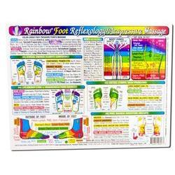 Inner Light Resources - Orginal Laminated Charts,  Foot Reflex Chart (Rainbow Coded), 1 ea