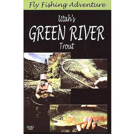 Fly fishing video magazine utah 39 s green river trout for Fly fishing green river utah