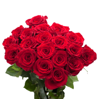 GlobalRose 50 Red Roses - Beautiful Fresh Flowers- Next Day Delivery