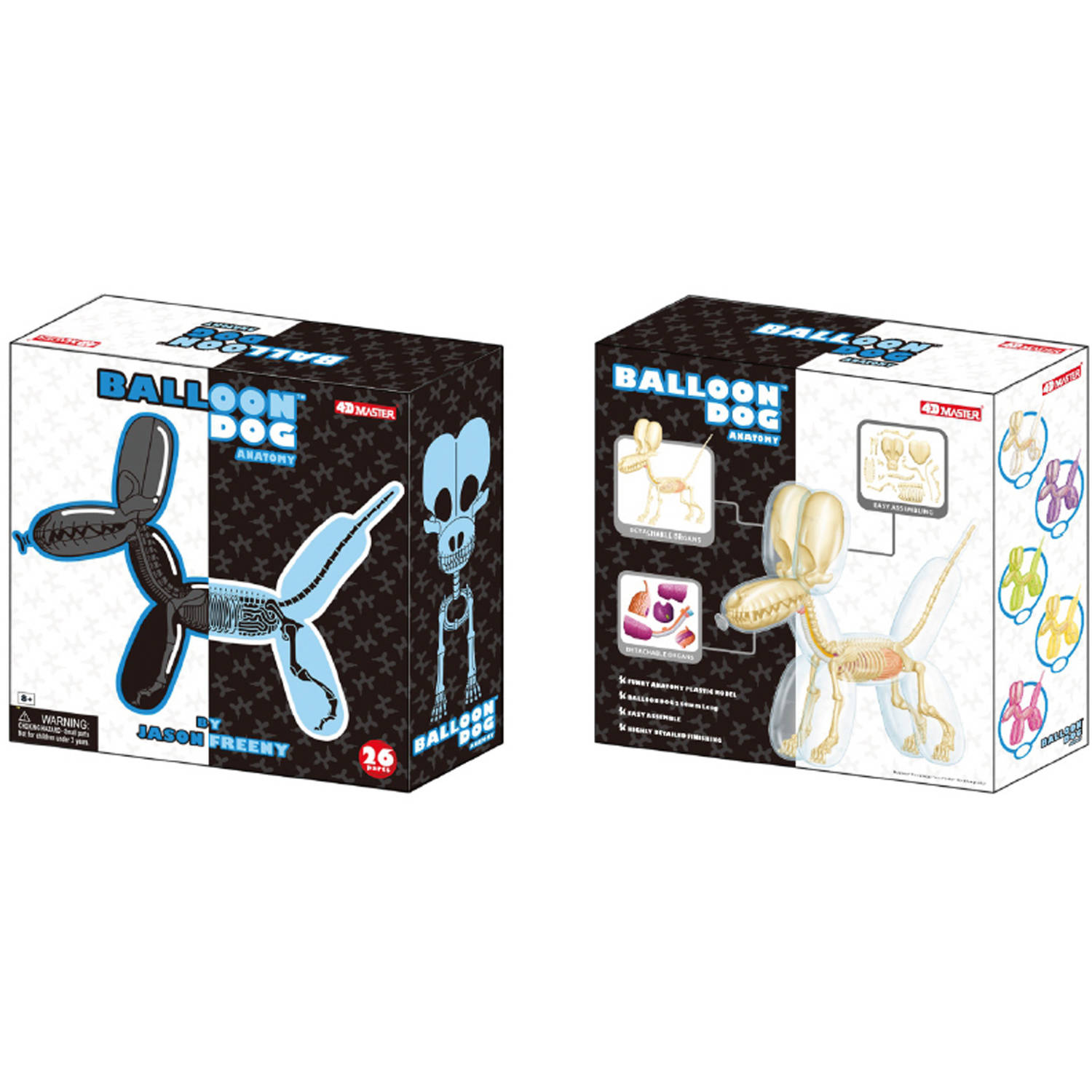 4D Vision Balloon Dog Anatomy Model by 4D Master