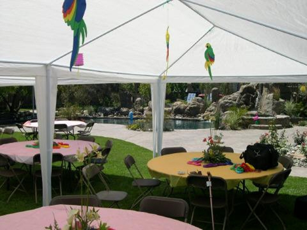 Outdoor Play Palm Springs  Palm Springs Outdoor 10 x 20 Wedding Party Tent Gazebo Canopy with Sidewalls
