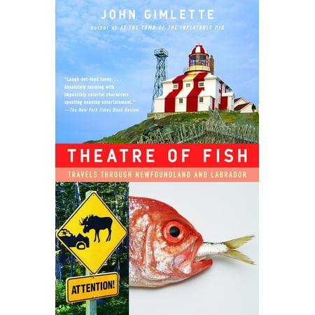 Theatre of Fish : Travels Through Newfoundland and Labrador