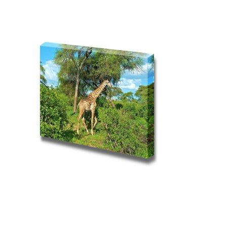 Canvas Prints Wall Art - Graceful Giraffe in African Savannah ...