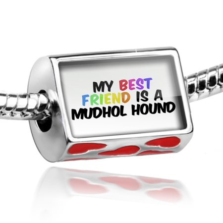 Bead My best Friend a Mudhol Hound Dog from India Charm Fits All European (Best Car For Womens In India)