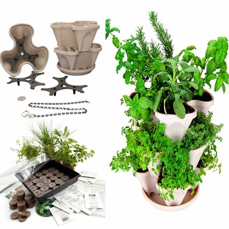 Stackable Planter + Medicinal Herb Garden Starter Kit- Start Growing Fresh Medicine Herbs - Seeds: Burdock, Echinacea, Astralagus, More - Includes Stone Color Stacking & Hangable Garden Planter (Henry Stone)
