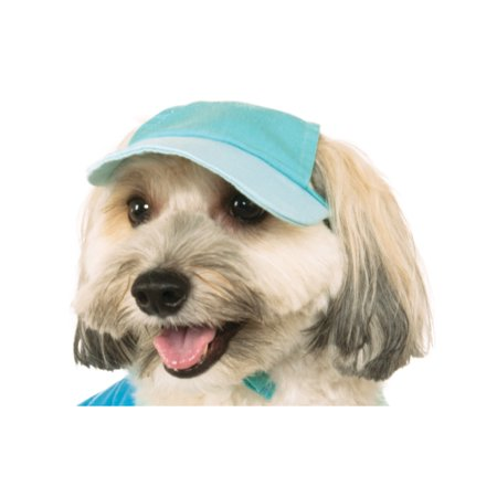 Light Blue Pastel Pet Dog Cat Spring Easter Baseball Cap Hat