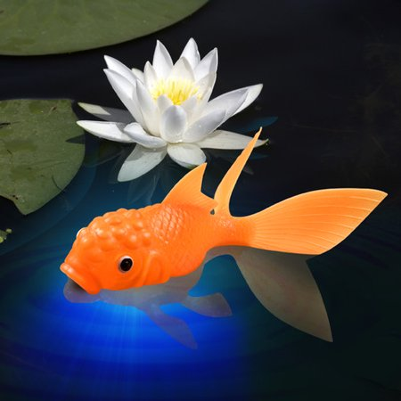 - Fred & Friends KOI TOY Light-Up Bath Goldfish