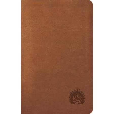 ESV Reformation Study Bible, Condensed Edition - Light Brown, - Leather Like Flap