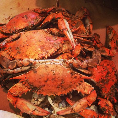 LAMINATED POSTER Maryland Steamed Crabs Poster Print 24 x 36 ()