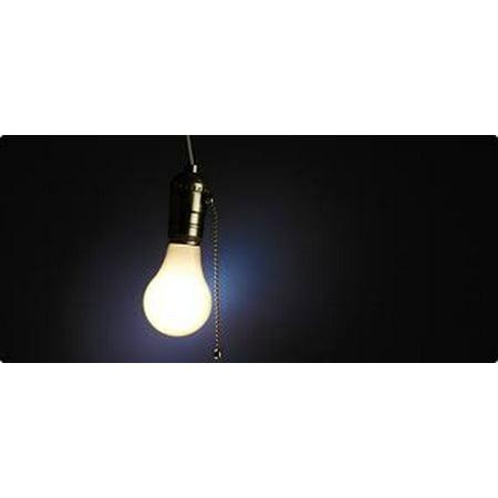 Halloween Light Bulb Assortment-flickering - Walmart com