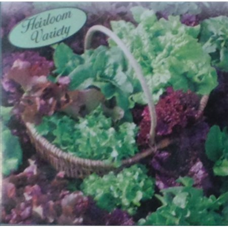 Lettuce Reds and Greens Loose Leaf Mix Seed Heirloom - 1 (Leaf Lettuce)
