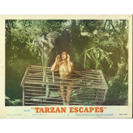 Tarzan Escapes POSTER Movie Mini Promo - Tarzan Halloween