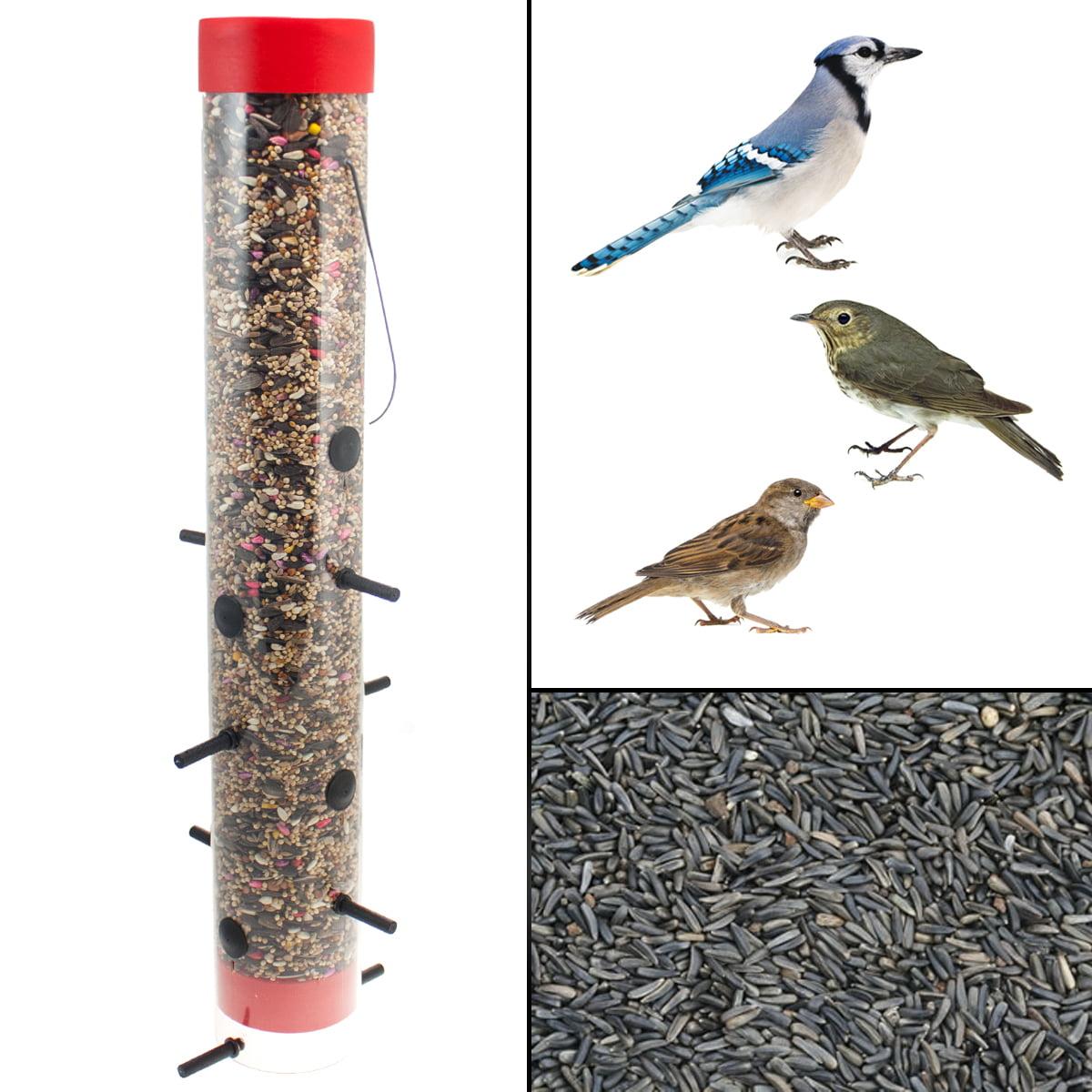 clean goldfinch feeders feeder goldfinches easy abundance in attract thistle