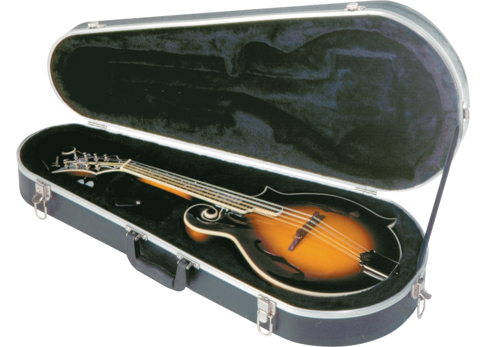 Musician's Gear Economy Mandolin Case for A and F Mandolins Black by Musician's Gear