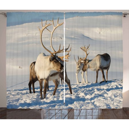 Winter Curtains 2 Panels Set, Reindeers Natural Environment Tromso Northern Norway Caribou Antler Wildlife, Window Drapes for Living Room Bedroom, 108W X 84L Inches, Brown Ivory Blue, by Ambesonne (Reindeer Antlers For Horses)
