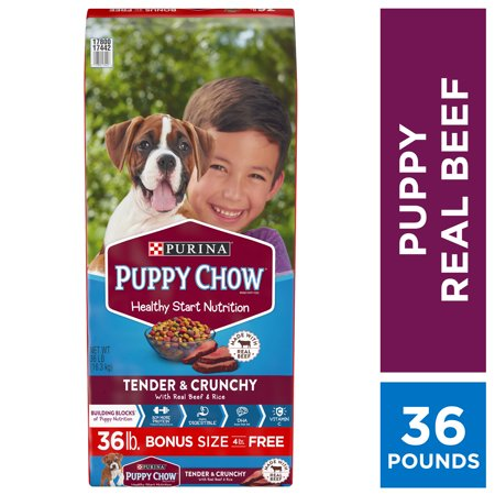 Purina Puppy Chow High Protein Dry Puppy Food, Tender & Crunchy with Real Beef - 36 lb. (Puppy Food For Sensitive Stomachs Large Breed)