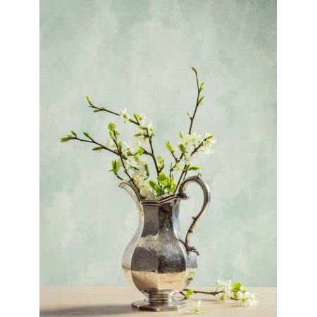 Antique Silver Jug Filled with Spring Blossom Print Wall Art By Amd Images